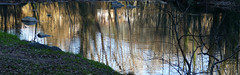 OLOT - REFLEXES AL FLUVIÀ (Joan Biarnés) Tags: olot garrotxa girona catalunya reflexes reflejos riu rio fluvià 291 panasonicfz1000