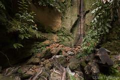 ...nature calls. (lars feldhaus) Tags: nature hiking waterfall jungle pitfall