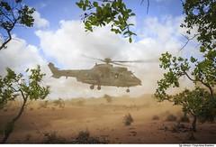 C-SAR - CRUZEX 2018 (Força Aérea Brasileira - Página Oficial) Tags: airbushelicopterh225m bra brasil brazil brazilianairforce csar cruzex cruzex2018 caracal eurocopterec725 fab forcaaereabrasileira forçaaéreabrasileira fotojohnsonbarros h36caracal helibras natalrn aeronave aicraft helicopter helicoptero rescue resgate natal rn 181126joh1253johnsonbarros
