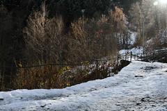 Passeggiata sulla prima neve (Ferdinando Tubito) Tags: montagna neve bosco alberi acqua fiume mare nuvole nikon vento sole sci silenzio cielo
