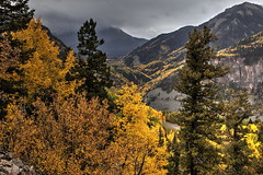 San Juan Mountains, Colorado (klauslang99) Tags: klauslang nature naturalworld northamerica san juan mountains colorado trees landscape fall autumn aspen mountain