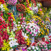 Different Flowers at Colorful Market Vendor in Ho Chi Minh City, Vietnam