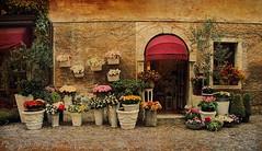 Sirmione (ingrid eulenfan) Tags: italien italy italia gardasee sirmione vintage geschäft blumen flowers strasse street sonyalpha6000 sony e 18105mm
