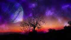 Cosmic afterglow (Iforce) Tags: afterglow sunset wallpaper landscape art composition design digital colors lights tree stars planets universe cosmos