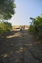 Helena e Letícia subindo (mcvmjr1971) Tags: red costão de itacoatiara praia niteroi brasil 2019 escalada trilha mmoraes nikon d800e lens sigma 2435 f20 art