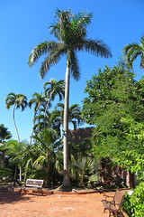 Key West Trip, December 1 to 11, 2018 1630Ri 4x6 (edgarandron - Busy!) Tags: keywest westmartellotower keywestgardenclub