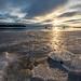 Frozen Shores