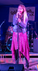 BOARoots-06034 (John French - Happy Snapper) Tags: bradfordonavon rootsfestival bradford avon music centre folk bluegrass blues