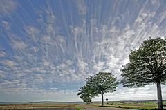 Wolken (1) (karl-heinzschwarz2) Tags: himmel landschaft bliesgau wolken saarland landscape clouds tree