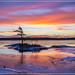 Androscoggin Dawn