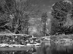 After the snow (pabs35) Tags: film believeinfilm 120 mediumformat blackandwhite ilfordfp4plus ilford fp4 fp4plus mamiyam6451000s mamiya m645 1000s chicago winter snow