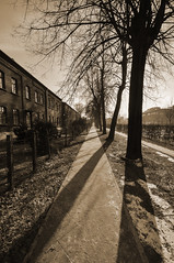 across from sun (rafasmm) Tags: lodz łódź poland polska europe old workers houses scheibler manufactory priestmill across from sun city citycenter lights shadows sepia stories alley cat trail winter walk nikon d90 sigma 1020 ex outdoor urban tree unsual name xix century