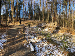 Morning walk through parts of Yves Rocher north-western trail (lezumbalaberenjena) Tags: yves rocher winter invierno hiver hiber nieve snow niege orleans lezumbalaberenjena 2018