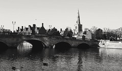 winter river (BedBrochFlick) Tags: bedford england uk mmxix 2019 bw blackandwhite ouse river riverouse winter
