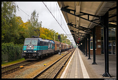 Lineas 186 293, Almelo 10-10-2017 (Henk Zwoferink) Tags: almelo lineas nmbs b bcargo cargo zweden xpress green sweden 186 293 bombardier traxx henk zwoferink