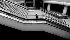 (cherco) Tags: japan kanazawa station street stairs lonely alone metropolitan man composition markiii arquitectura architecture escaleras estacion solitary silhouette silueta shadow sombra solitario composicion canon city ciudad canoneos5diii blackandwhite japon