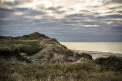 Sea spirit. Dunes with grass. Klitmoller Denmark (Carl Terlak) Tags: denmark dunes wave wild emount thy sky jutland sony sea