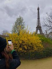 Paris, France (miamism) Tags: mipim2019 mipim triptocannesfrance mipimcannes europe triptoeurope rickandines miamismsalesteam teammiamism globalpartners parisfrance paris eiffeltower
