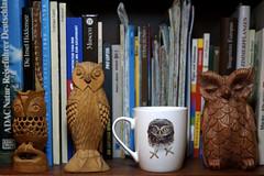 Eulen (ingrid eulenfan) Tags: 2019 kaffeepause coffeebreak 365project kaffee coffee cup coffeepot tasse bücher buch eule eulen owl holz holzeulen reihe