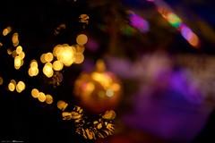 DSC07058 (Distagon12) Tags: wideaperture nightphoto night nuit nacht noël noche weihnachtsmarkt weinhnachten christmas people paris light lumière leica licht sonya7rii summilux