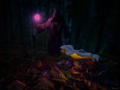 It's time for a bit of magic (Eifeltopia) Tags: passion mushroom zauberer zauberstab eifel südeifel wald forest autumn herbst learningbydoing leidenschaft fungus wand magican sorcery druid laub blätter leaves clover klee fun experimenting procedure outdoor illuminated glowing scenery szenerie notperfect druide gewand garment cape umhang wideangle macro twilight dämmerung abends selfportrait ilovemywideangle reflective purple gleaming downhill eifelwald bühne set kulisse postprocessing inspired vibe abrakadabra hokusfocus