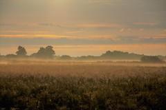 Sunrise and Haze