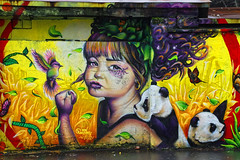 Petite fille au poing levé (Edgard.V) Tags: paris parigi streetart arte urbano urban murale jessy panda portrait ourcq living colors graffiti portraiture