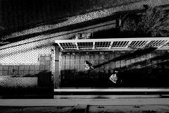 271018 City of October (soyokazeojisan) Tags: japan kobe bw city street light people blackandwhite shadow monochrome digital olympus em1markⅱ 918mm 2018