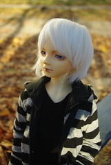 Volks F16 (HyperLaceAlchemists) Tags: volks f16 doll bjd fcs sd sd13 cool outdoor autumn