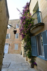 Mdina Malta (D70) Tags: lovely narrow streets with colourful doors window complimented flowering vines mdina malta old fortified city
