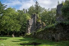 Finlarig Castle (Ha-Tschi) Tags: pentax ks2 scotland finlarigcastle ruins