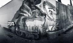 Fotografia estenopeica-pinhole-GRAFFITI-Taller 24-11-18-ZARAGOZA Plaza Mayor- (Miguel Ángel Tremps) Tags: taller miguelangeltremps estenopo pinhole distancia focal distanciafocal apertura estenopeica fotografiaestenopeicapinhole tallerdefotografiaestenopeicapinhole graffiti talleresestenopeicos objetivoisabella
