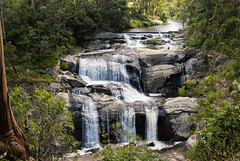 Agnes Falls South Gippsland (laurie.g.w) Tags: agnesfalls south gippsland waterfall cascade creek stream water rocks country victoria australia landscape river natural eosm canon