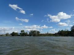 Naivasha lake (Linda DV) Tags: lindadevolder africa 2018 lumix travel geotagged nature kenya fauna naivasha lake