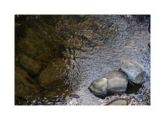 (giovdim) Tags: greece river stones ripples water forest athos giovis serenity calm zen meditation tranquility