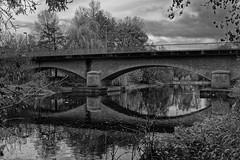 pont de domine (naintré 86) (ludovicthiaudiere) Tags: pont bridge konicahexanon40mmf18 noiretblanc monochrome nouvelleaquitaine reflections reflets sonyilce7m3