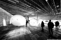 Balls23 (Marco Pacini) Tags: marcopaciniphoto venezia biennale biennale2018 bn bnw blackandwhite blackwhite bnwarchitecture bnwphotography bnwphoto nikon nikonitalia nikoncameras nikonphotography nikkor nikkorlens nikonclub nik fisheye fish club16