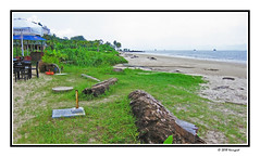 libreville beach (harrypwt) Tags: harrypwt gabon libreville africa afrika canons95 s95 paintinglike borders framed beach coastal sea sand grass ships boats