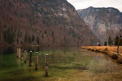 Blick St. Bartholomä in Richtung Obersee (Obachi) Tags: kirchestbartholomä berchtesgarden flickr königssee