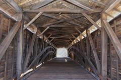 In the Belly (timvandenhoek1) Tags: unioncoveredbridge monroecounty missouri sonyilce6000 sigma19mmf28emount godoxtt685s timvandenhoek
