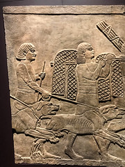 Preparing for the hunt (tommyajohansson) Tags: london bloomsbury britishmuseum museum bm tommyajohansson geotagged assyrian specialexhibition