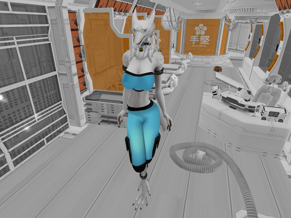 The World's most recently posted photos of secondlife and sergal