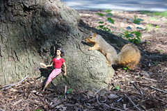 Poppy Parker and the Squirrels - In Ann Arbor at the University of Michigan - September 23rd, 2018 (cseeman) Tags: gobluesquirrels squirrels annarbor michigan animal campus universityofmichigan umsquirrels09232018 fall autumn eating peanut acorns septemberumsquirrel dolls fashiondolls poppyparker fashionroyalty integritytoys poppyandsquirrel paintboxdesigns poppysquirrel2018 poppyparkerandsquirrel foxsquirrels easternfoxsquirrels michiganfoxsquirrels universityofmichiganfoxsquirrels