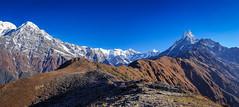 Nepal Himalayas Panorama (Color Odyssey) Tags: mountains adventure trek trekking travelphotography panorama himalayas nepal landscapephotography landscape hike hiking annapurna