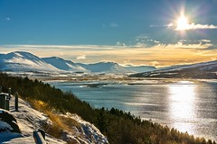 Eyjafjordur (Einar Schioth) Tags: eyjafjordur winter day sky sunshine snow sea sun shore sigma sigma2470 stillness canon clouds cloud coast trees tree vividstriking nationalgeographic ngc nature mountain mountains mirrors landscape lake photo picture outdoor iceland ísland ice einarschioth