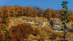 Autumn in the mountain (Milen Mladenov) Tags: 2018 landscape autumn fall foliage forest green leaves mountain nature orange path red rock rocks season trees yellow