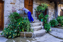 Yoga - (319/365) (Walimai.photo) Tags: candid robado people gente pueblo village lumix lx5 panasonic sanmartíndelcastañar salamanca spain españa street calle planta plant water agua regar