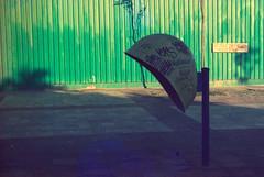 medicinal herbs (pedropapini) Tags: phone sao saturation saopaulo scene sampa super saturação around street brazil exterior explorer color city cidade cor colors camera vida verde brasil negative negativo mundo mood day dia foto fotografia film grain gabriel life world 35mm earth rua