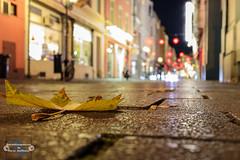 Herbst in der Stadt (Betrachtungsweisen) Tags: 2018 nachtfotografie eosm50 herbst november bonn langzeitbelichtung longexposure autumn laub leaf deutschland