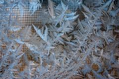 Jet stream (vaneramos) Tags: abstract blue frost macro texture winter